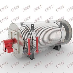 China thermal oil Heaters